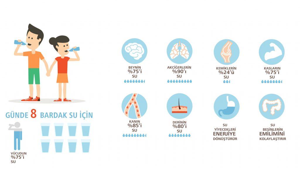 su_infographic