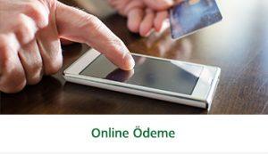 online_odeme